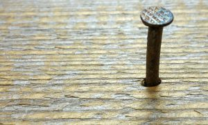 Nahaufnahme eines Nagels im Holz